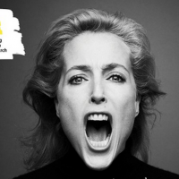 Gillian Anderson swears to help mental health in young people
