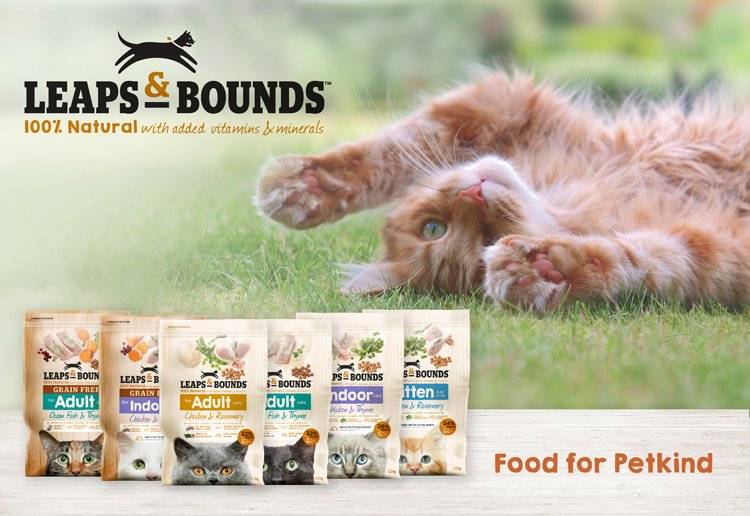 mom286194 reviewed Leaps & Bounds Grain Free Ocean Fish and Thyme Adult Cat Food