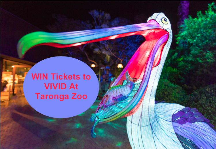 Win A Family Pass To See Vivid Sydney At Taronga Zoo