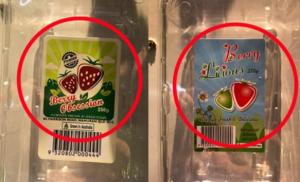 qld strawberries 2