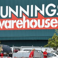 Bunnings Launches Adorable Little Gardeners Kids' Collectables