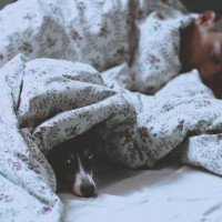 The Surprising Secret To A Good Sleep Involves Your Dog!