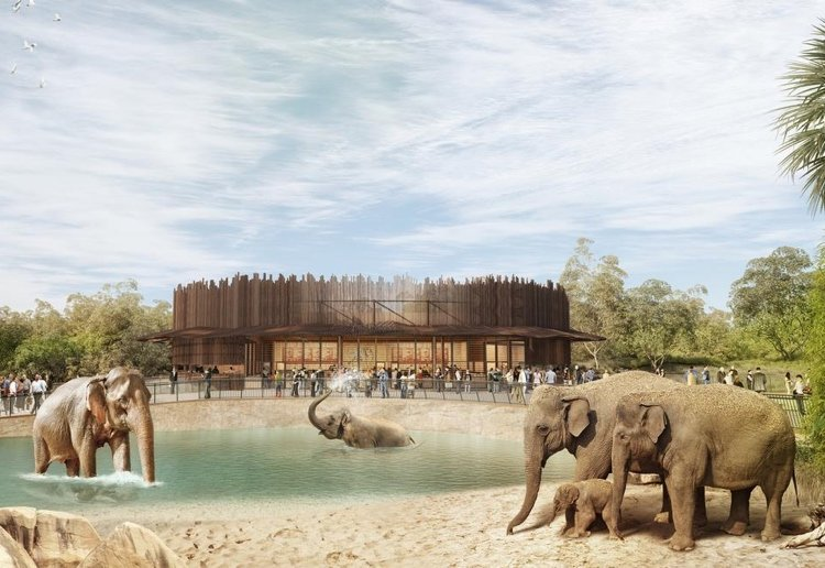 The elephant enclosure at the new Sydney Zoo