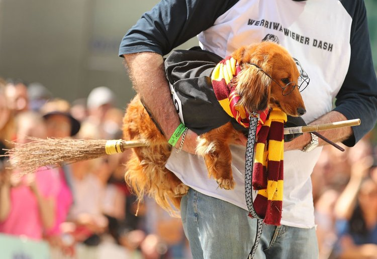 A Harry Potter Fun Run Is Coming To A City Near You