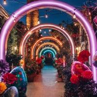 Take A Trip Down A Rainbow Dessert Lane