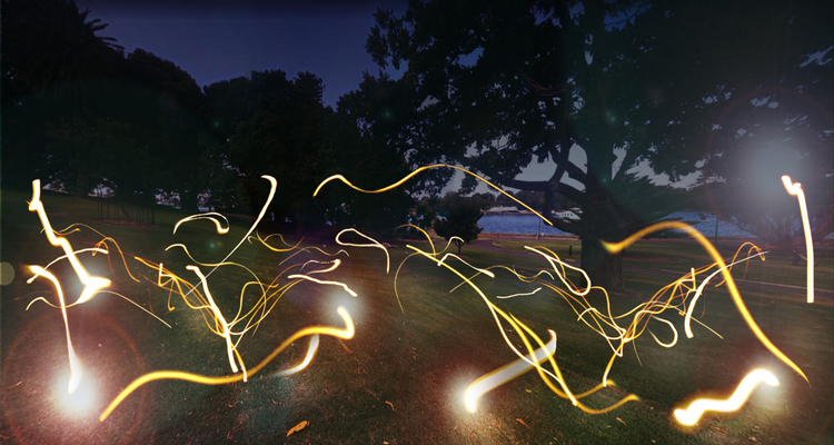 The Firefly Field At Vivid Royal Botanic Garden