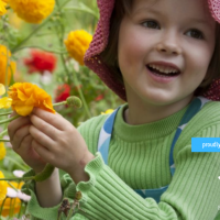 What's On At The Royal Botanic Garden Sydney This July School Holidays