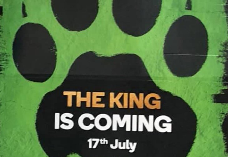 Woolworths collectables lion king