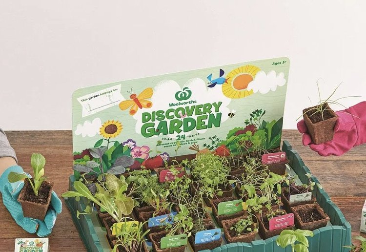 Top Tips For Your Woolworths Discovery Garden Collection