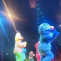 Sesame Street Circus Spectacular By Silvers! Review