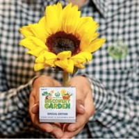 Special Limited Edition Woolworths Discovery Garden Sunflower Seeds On Sale This Weekend Only