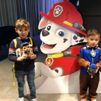 Ready Race Rescue Paw Patrol Movie Review