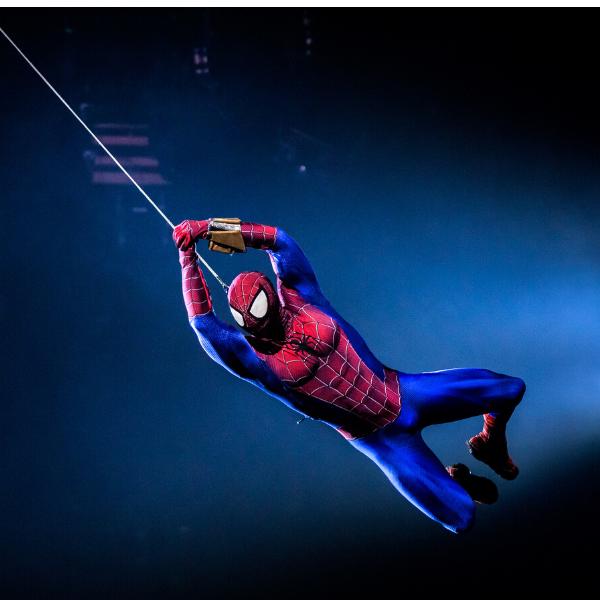 Marvel_Article_Spiderman_image