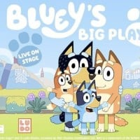 The Bluey Live Stage Show Is Coming Soon