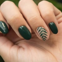 Shellac Nails: What You Need To Know