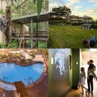 Free Kids Activities In Brisbane