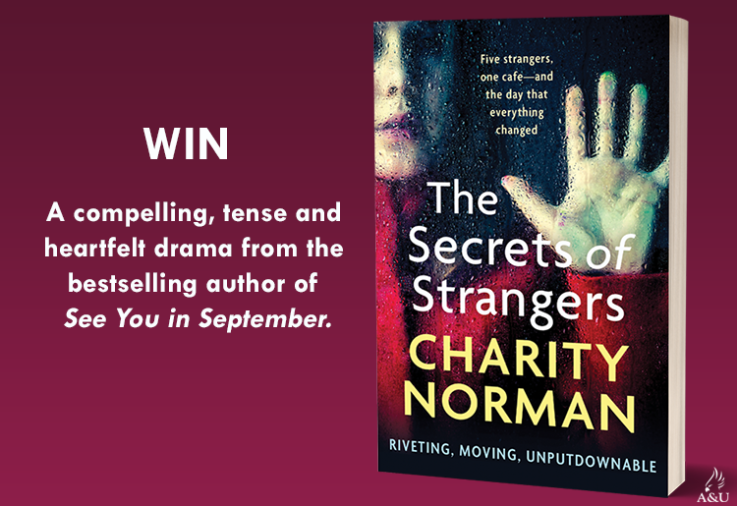 The cover of the book The Secrets of Strangers by Charity Norman with promotional copy