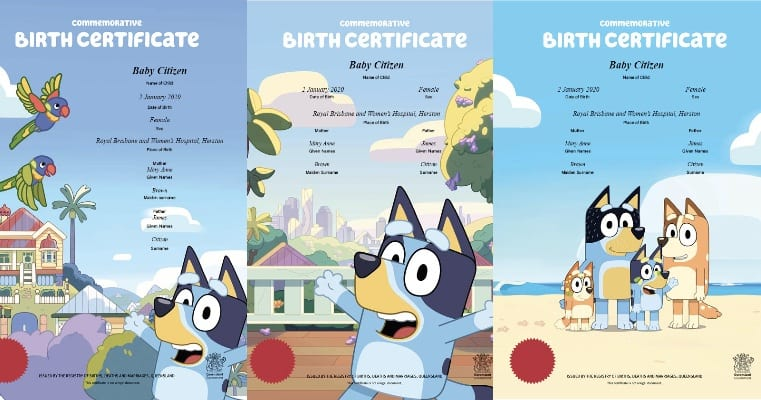 Three Bluey Birth certificates