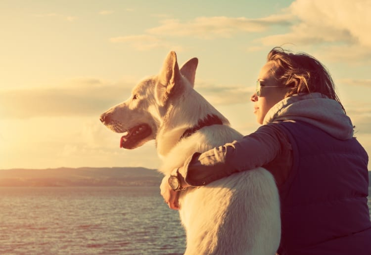 Many People Would Pick Their Pooch Over Their Partner