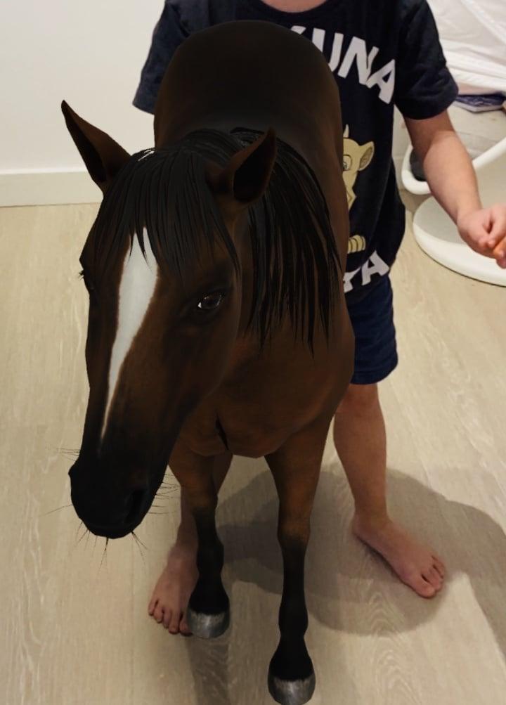 ar animals horse