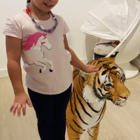 Yikes, There's A Tiger In My House - Google Launches Awesome AR Animals