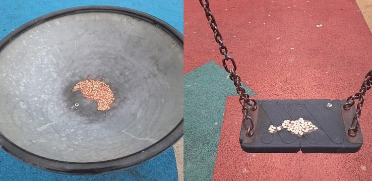 beans in playground