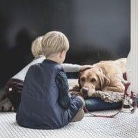 How Pets Improve Child Development