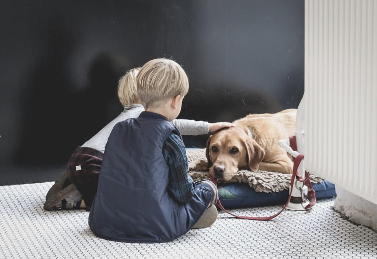 How Pets Improve Child Development