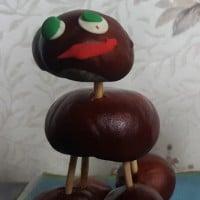 Chestnut animals