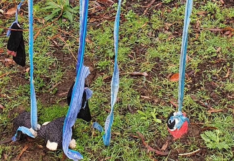 Puppy Swing n Play