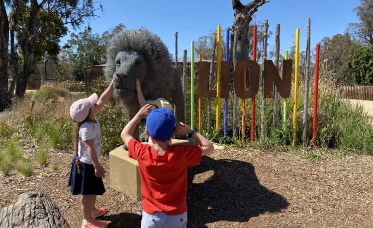 dubbo-zoo-lion