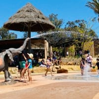 Top Tips For Visiting Taronga Western Plains Dubbo Zoo With Kids