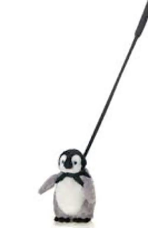 penguin on lead