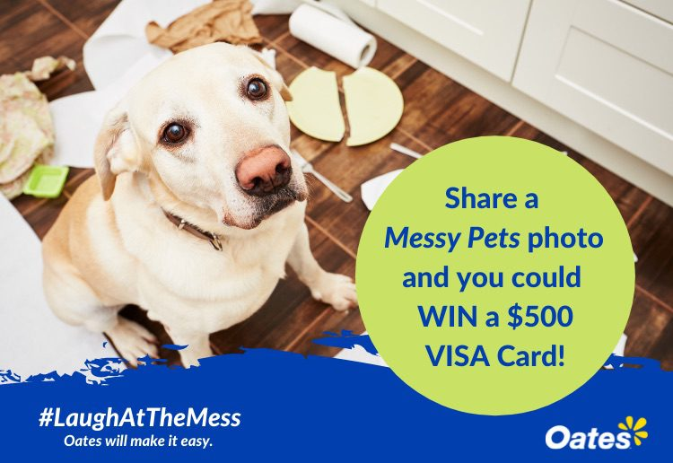 Share Your Pet Mess & WIN A $500 Visa Gift Card
