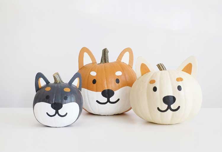 Shiba Painted Pumpkins